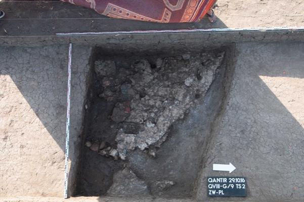 71b-news-from-the-field-2-footprints
