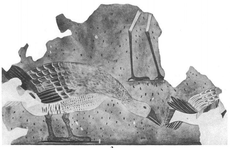 125b. North Palace frescoes (Newton 1924)